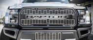 2017 Ford F-150 SVT Raptor Logo Front Center Grille (772060)
