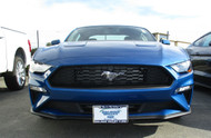 2018 Ford Mustang - Removable Front License Plate Bracket SNS135