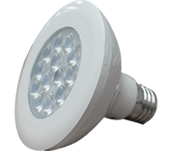 11W LED PAR38 Economic Lamp