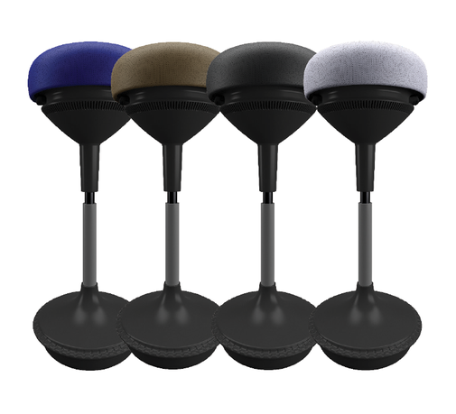 birdi-all4colors-800w-500h.png