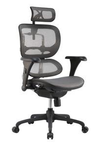Elastomeric Mesh Seat & Back