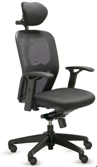 Valo Polo Ergonomic Task Chair OfficeChairsUSA