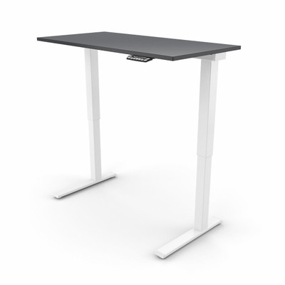 EFloat Sit Stand Adjustable Height Table