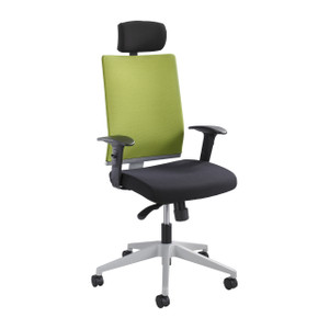 Tez™ High Back Manager Chair with Wasabi Mesh Back and headrest