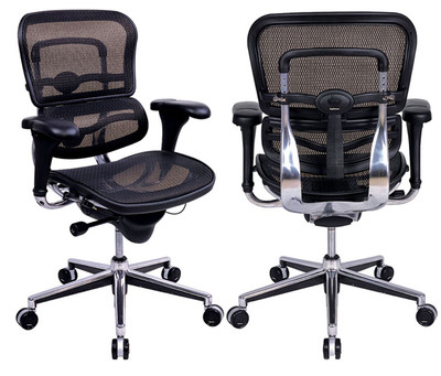 EuroTech Ergohuman Leather Mesh Executive Back And Front Right View