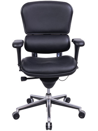 EuroTech Ergohuman Leather Mid Back Executive