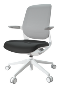 FLYT White/Grey Mesh Back Task Chair with Onyx seat