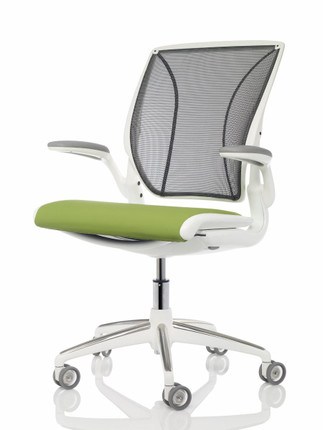 Humanscale Diffrient World Chair With White Frame