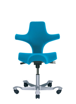 HAG Capisco H8106 Saddle Seat w/ Back in Blue Seat Silver Base  sc 1 st  Office Chairs USA & HAG Capisco Saddle Chair | Saddle Stool with Back | OfficeChairsUSA islam-shia.org