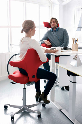 saddle office chair. hag capisco h8106 saddle seat w back red rear view office chair s