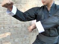Eagle Kung Fu Uniform #545