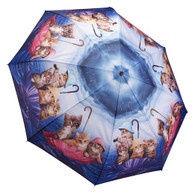 Kittens Ahoy Umbrella