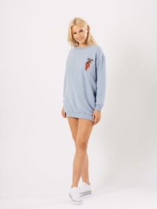 Baby Blue Embroidered Oversized Jumper Dress