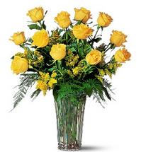 A Dozen Yellow Roses