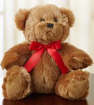 Cuddly Plush Bear - Small