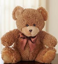 Cuddly Plush Bear - Large