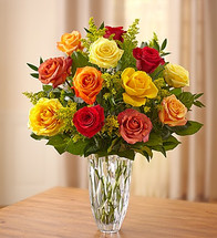 Marquis by Waterford® - Premium Fall Roses