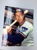 GLENN BECKERT - Chicago Cubs - AUTOGRAPHED 8x10 (Holding Bat with Helmet)