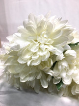 Chrysanthemum white bush each
