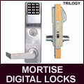 Alarm Lock Standalone Access Control Locks
