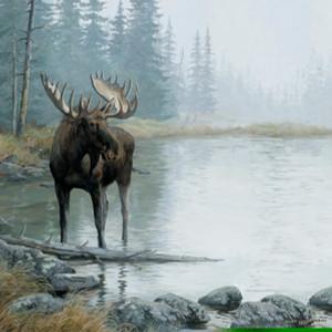 Moose Print Scrapbook 12x12