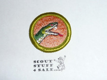 Reptile Study - Type H - Fully Embroidered Plastic Back Merit Badge (1971-2002)