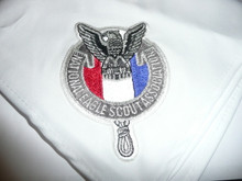 National Eagle Scout Association Neckerchief