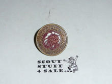 Order of the Arrow MGM Indian Logo Bronze Finish Pin