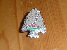 Philmont Scout Ranch Arrowhead Pin - Scout