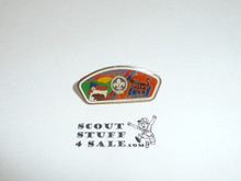 1987-88 World Jamboree Southern California Troop 542 JSP Pin