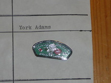 York-Adams Council CSP Shaped Pin - Scout