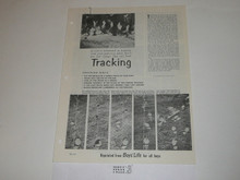 Topic Reprint, Tracking Boys' Life Single Topic Reprint #BL-27