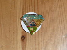 1985 75th BSA Anniversary Diamond shaped Pin - Scout