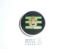Junior Assistant Scoutmaster Hat Pin, Pointed Crown, Post with spin lock 21272