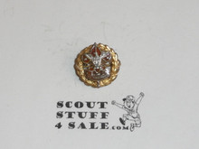 Assistant Scout Executive Lapel Pin, Tall Crown, Horizontal Spin Lock Back