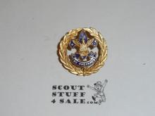 Girl scout junior