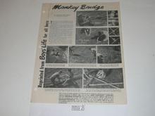 Topic Reprint, Monkey Bridge Boys' Life Single Topic Reprint #6-53