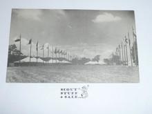 1950 National Jamboree Postcard The Flag Poles