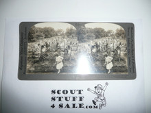 1900's Stereoscope Picture of War Gardens With Boy Scouts and Girl Scouts Tending to Them