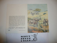 Baden Powell Painting on Greeting Card Made By Unicef, Inside Blank, Oryx