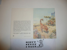 Baden Powell Painting on Greeting Card Made By Unicef, Inside Blank, Giraffe