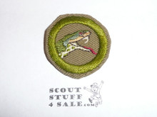 Reptile Study - Type C - Tan Crimped Merit Badge (1936-1946), was sewn but in very good condition