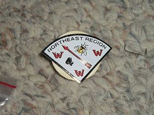 Order of the Arrow Northeast Region Pie Pin - Scout