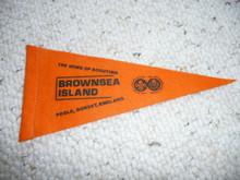 Old Felt Brownsea Island Pennant