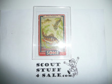 1933 Some Boy Chewing Gum Boy Scout Card Set By the Goudey Gum Company, Boston Ma, #19 The Yellow Perch