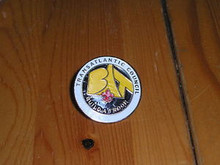 "Transatlantic Council ""Build a Troop"" Pin - Scout"