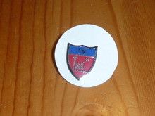 Region Four JLT Shield Pin - Scout