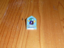 BSA Southeast Region Pin - Scout