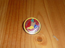 BSA Region 4 Pin - Scout