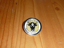 BSA Region 12 Pin - Scout